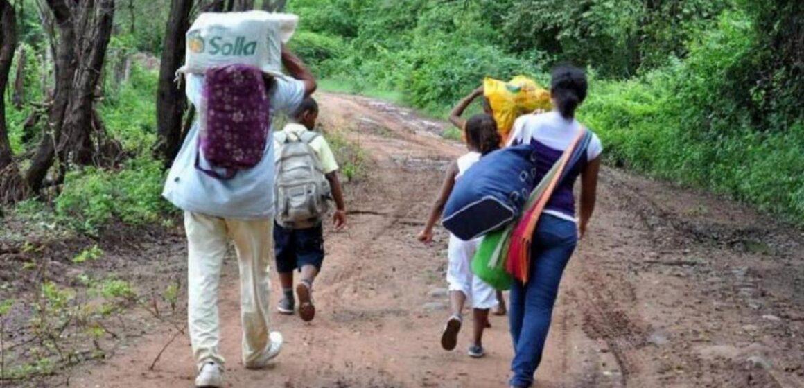 Catatumbo: entre la violencia, los cultivos ilícitos y la desidia