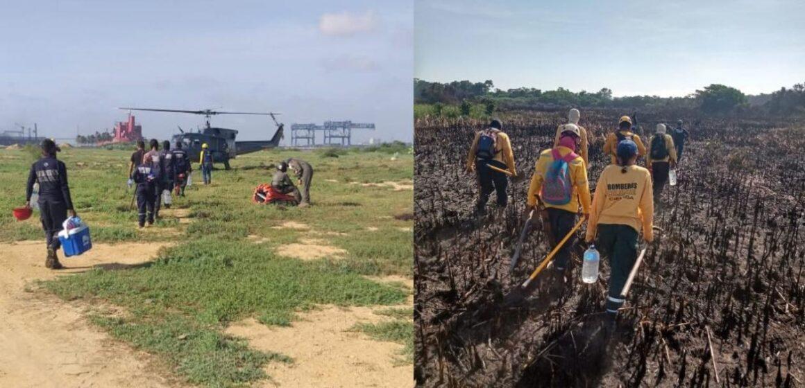 Bomberos reinician labores de control en incendio forestal en Isla Salamanca