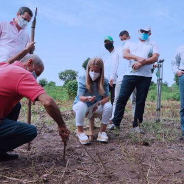 Gobernadora acompañó siembra de kits de semillas en Polonuevo