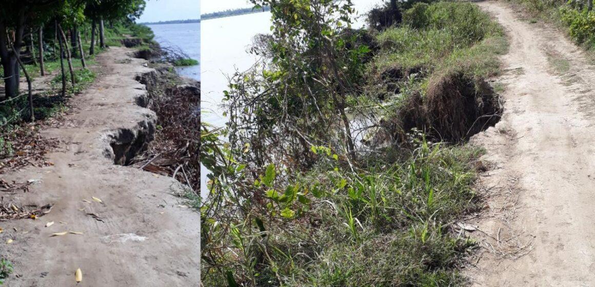 ¡Alarma! Fuerte erosión del río Magdalena amenaza los cultivos en vereda Caimital de Malambo