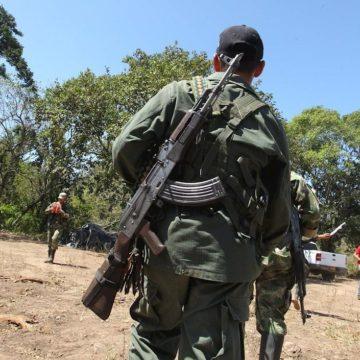 Al menos 77 exguerrilleros de las FARC fueron asesinados en 2019: ONU