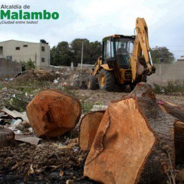 ¡No más basureros a cielo abierto! Alcaldía de Malambo recupera inmediaciones del Centro de Vida La Magdalena