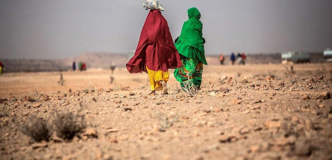 57,6 millones de africanos en situación alimentaria crítica por el Covid-19